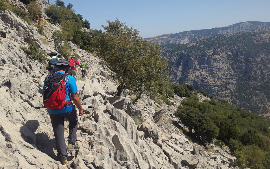 LMT 01 - Christian Akhrass - LMT Side Trail to Douma (Chatine, North Lebanon).jpg